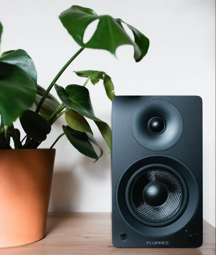 Speaker and houseplant